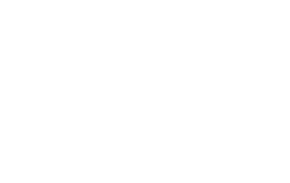 beschermingsbewind twente white 320x202 - Klantcases