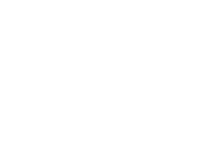 brusse masselink white 320x202 - Team InventIT
